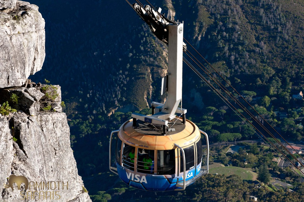 Its always best to get up early to enjoy the spectacular views from the cable car on Table Mountain.