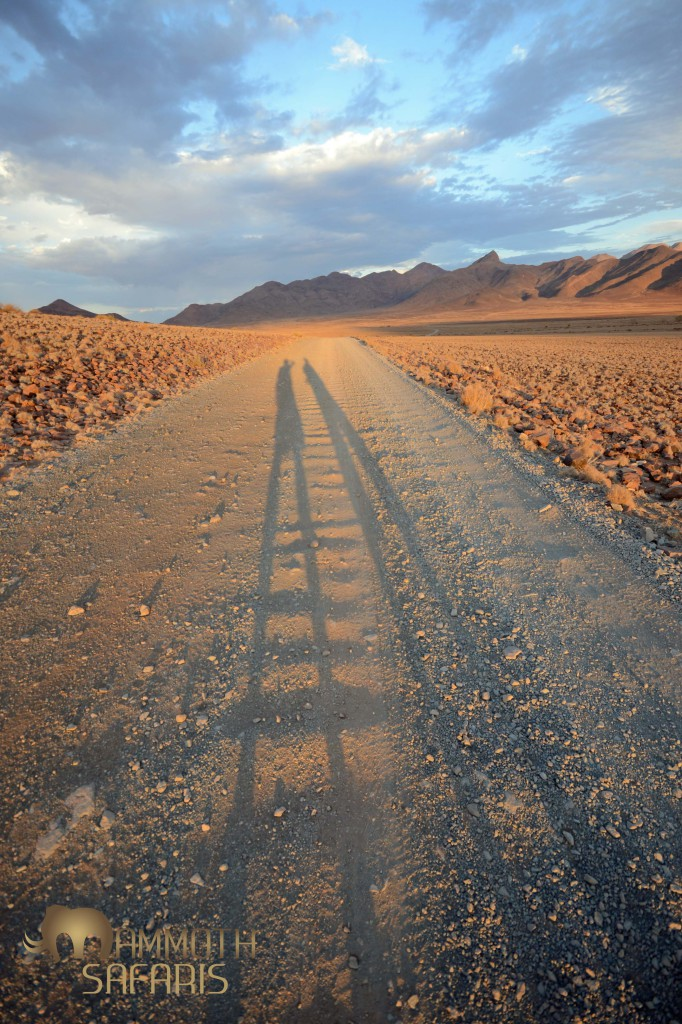 The Namib Rand Reserve is a photographer's paradise - colour, texture, space, contrasts and more...
