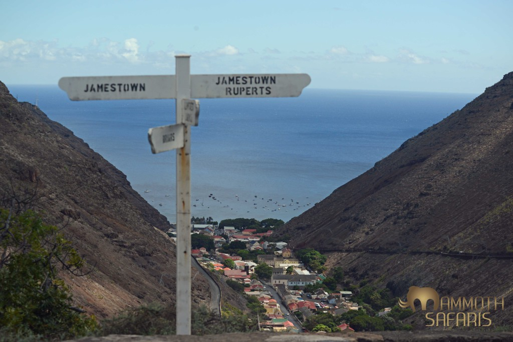 A view from the hillsides down to the 'capital' of Jamestown - all in the middle of the Atlantic Ocean, about 2000 kilometers from Africa!