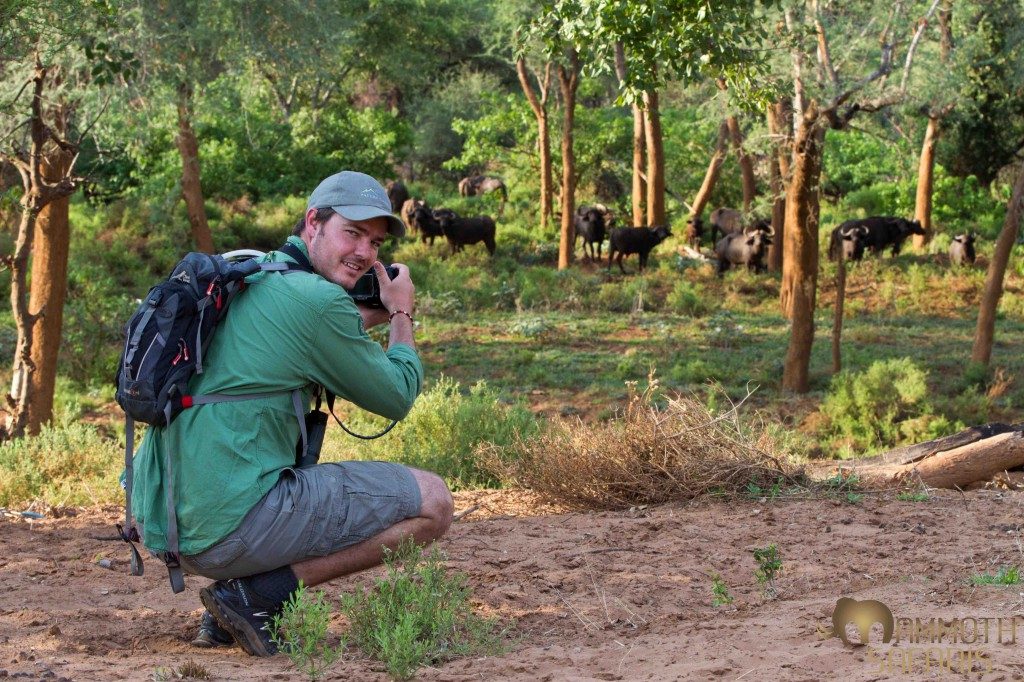 Brett, head of sustainability at Wilderness Safaris enjoying a fantastic photographic opportunity with buffalo.