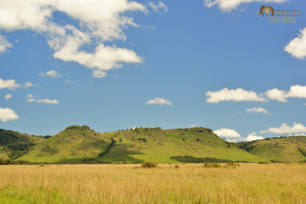 The 'Out of Africa' site where the superb new Angama Mara lodge will be opening soon.