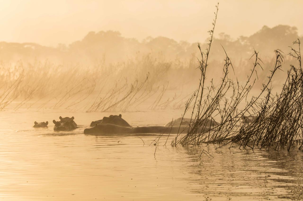 River_Club_Zambia